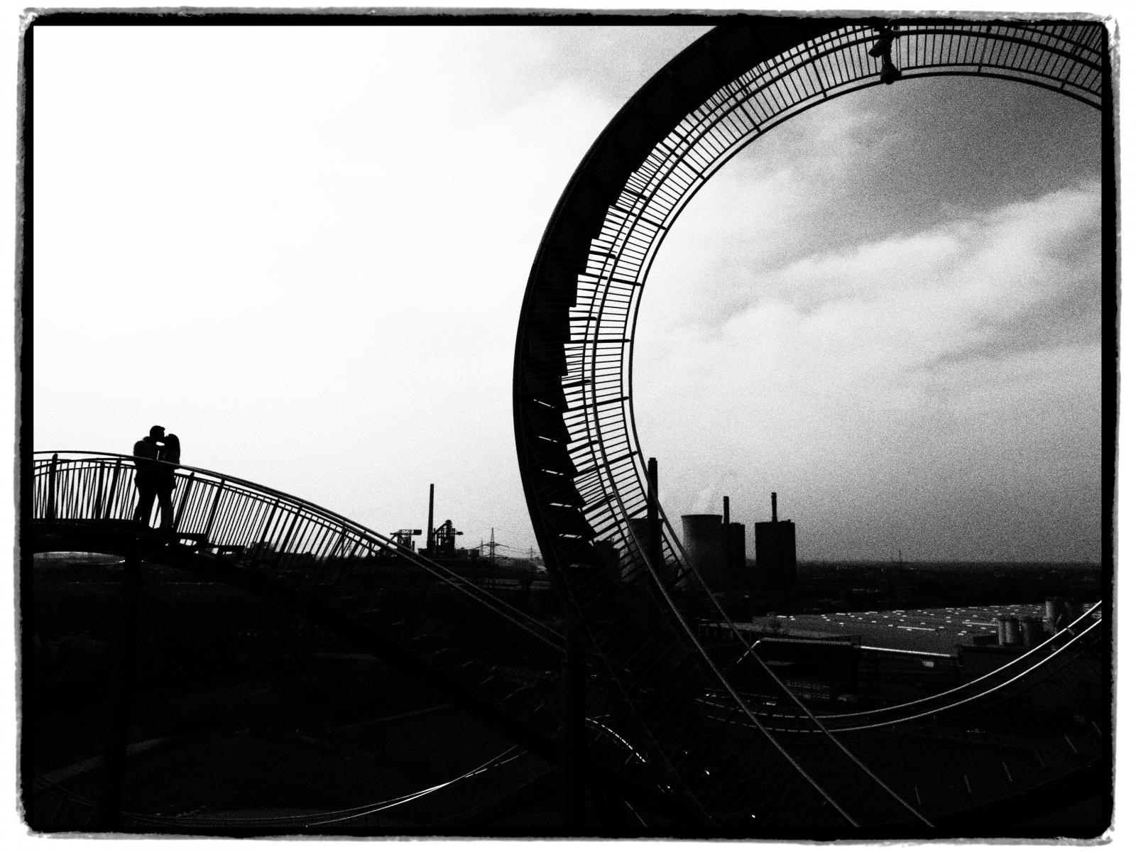 Kiss on Tiger and Turtle